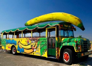 Banana Bus ??